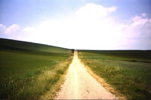 caminho_530x350