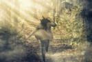 Quando eu peco, eu corro de Deus…