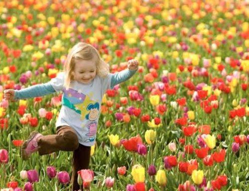 Sempre há uma nova primavera